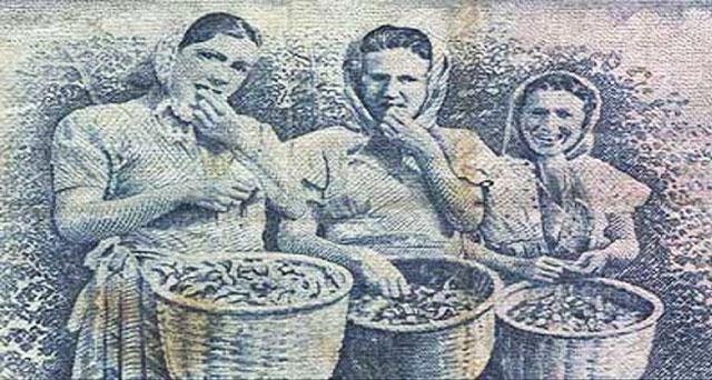 findik-kizlar-mani
