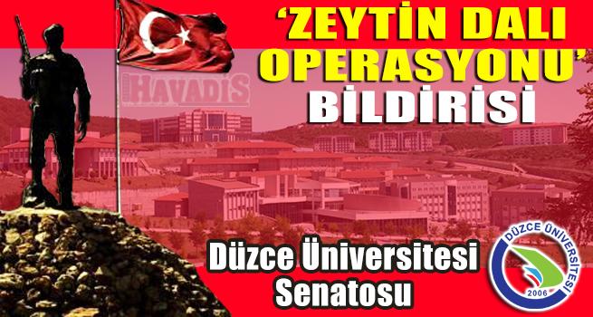 SENATODAN 'ZEYTİN DALI OPERASYONU' BİLDİRİSİ
