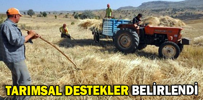Tarımsal destekler belirlendi. Kim ne kadar yer parası alacak