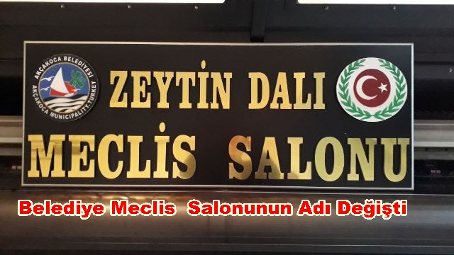 HAREKATIN ADI MECLİS SALONUNA VERİLDİ