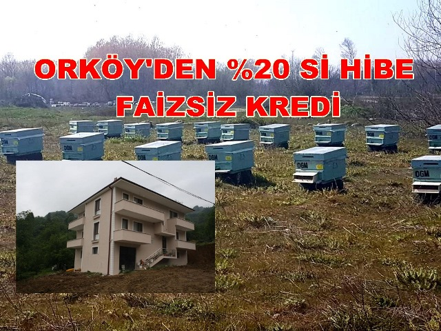 Orman İşletme Müdürlüğü Açıkladı ORKÖY'DEN FAİZSİZ KREDİ
