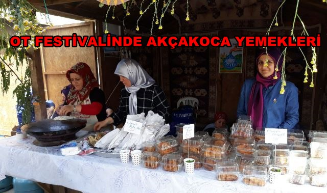AK PARTİ KADIN KOLLARI OT FESTİVALİNDE TANITIMDA BULUNDU