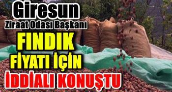 """Giresun Ziraat Odası Başkanı Nurittin Karan: """"Fındık fiyatı …."""
