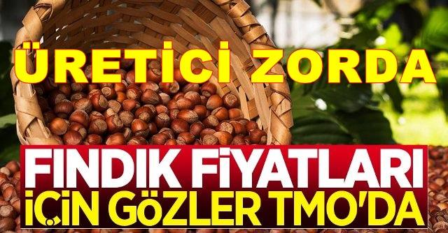 Ağustos Bitti, Fındıkçının Umudu TMO, Neden Hala Sus Pus!!!!