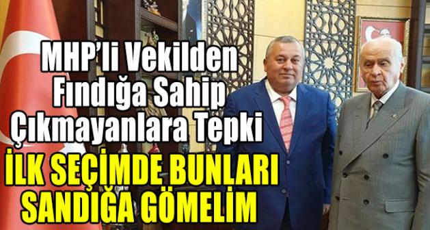 MHP'li Vekilden AK Parti'ye fındık tepkisi: Sandığa gömelim