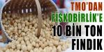 TMO 10 Bin Ton Fındığı Teslim Ediyor