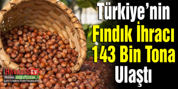 Türkiye'nin fındık ihracı 5 ayda 143 bin tona ulaştı