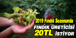 FINDIK ÜRETİCİSİ 20 TL İSTİYOR