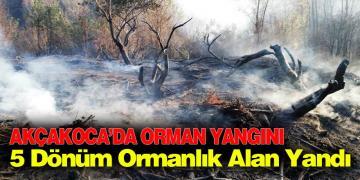 Akçakoca da Orman Yangını