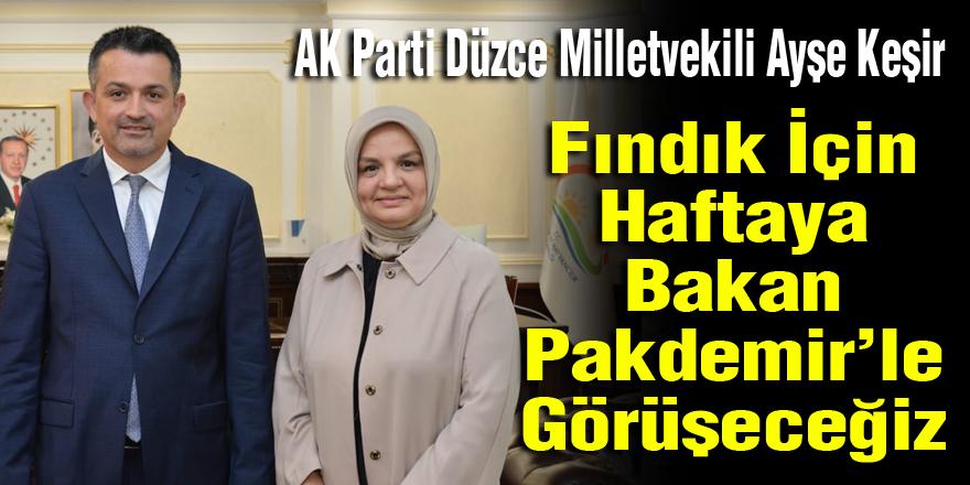 Fındıkla İlgili Ak Partili Karadeniz Bölge Vekilleri Bakanla Görüşecek