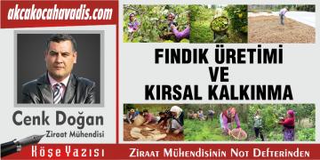 FINDIK ÜRETİMİ VE KIRSAL KALKINMA