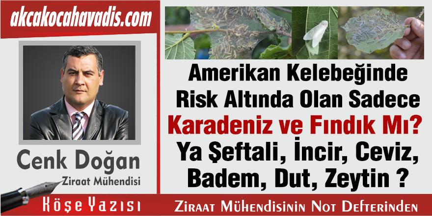 Amerikan Kelebeğinde Risk Altında Olan Sadece Karadeniz ve Fındık Mı, Ya Şeftali, İncir, Ceviz, Badem, Dut, Zeytin?