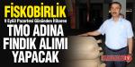 FİSKO TMO ADINA FINDIK ALINACAK