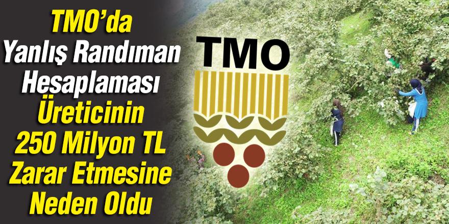 TMO randıman tespitini eksik yaptı: Üreticinin kaybı 225 milyon lira
