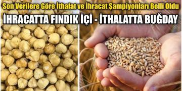 İthalatta buğday, ihracatta fındık içi önde