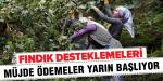 DESTEKLEME ÖDEMELERİ TC NUMARALARIN SON RAKAMINA GÖRE YARIN BAŞLIYOR
