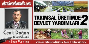 Tarımsal Üretimde Devlet Yardımları-2 :