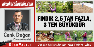 FINDIK 2,5 TAN FAZLA, 3 TEN BÜYÜKTÜR
