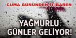 HARMANDA FINDIĞI OLANLAR DİKKAT !!!!